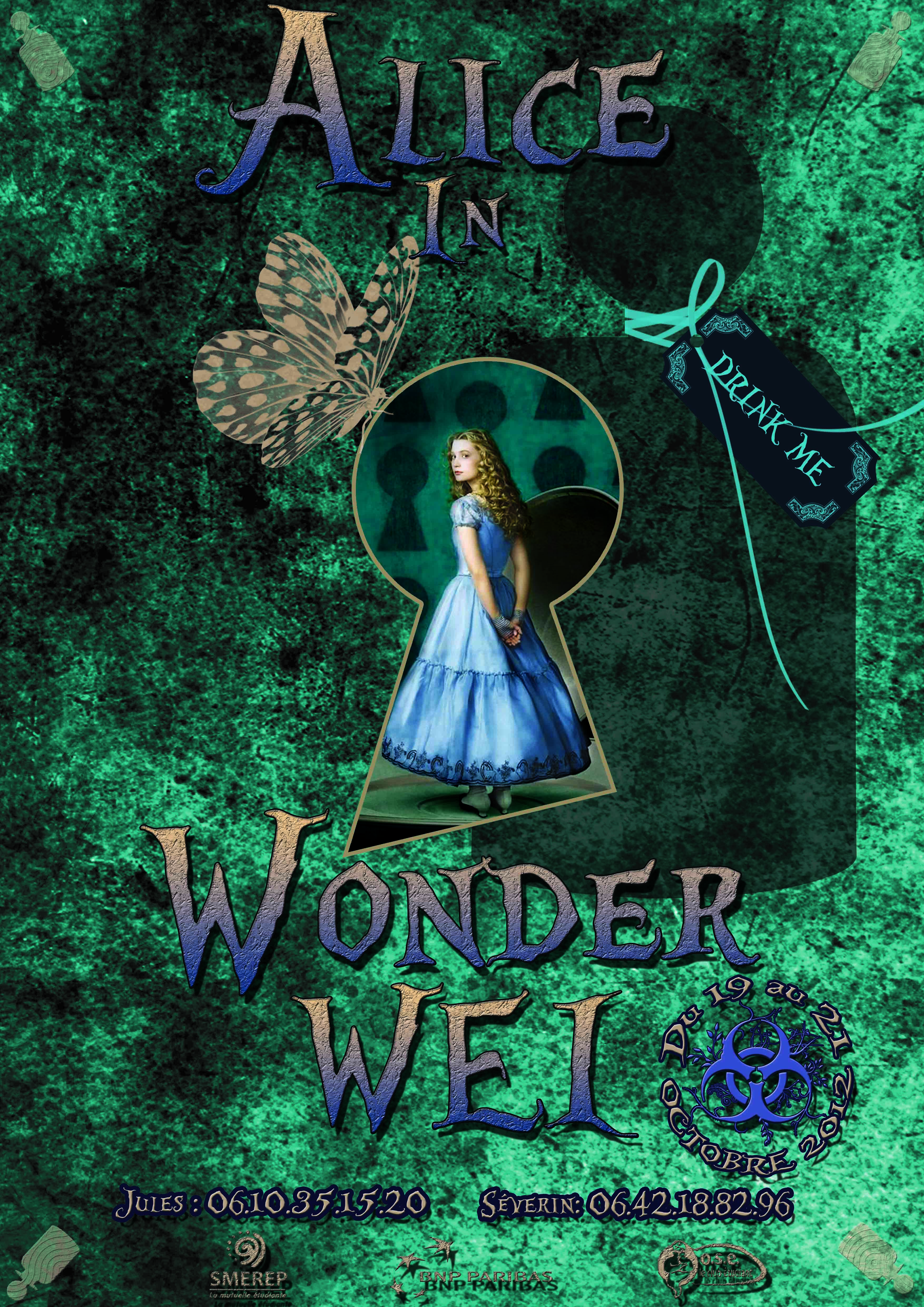 Affiche Alice in WonderWEI